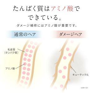 タンパク質を構成するのはアミノ酸